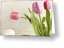 Tulips Greeting Card by HJBH Photography