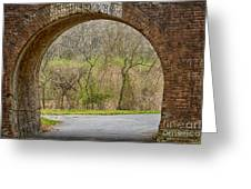 Tunnel Vision Greeting Card by Anne Rodkin