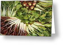 Turnip And Chard Concerto Greeting Card by Jen Norton