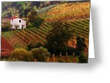Tuscan Autumn Greeting Card by John Galbo