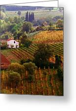 Tuscan Autumn Greeting Card by John Galbo