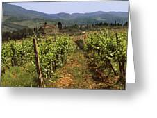 Tuscany Vineyard No.2 Greeting Card by Mel Felix