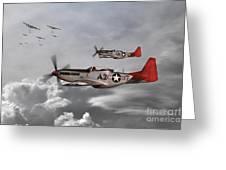 Tuskegee Airmen Greeting Card by J Biggadike