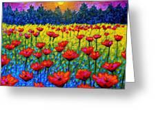 Twilight Poppies Greeting Card by John  Nolan