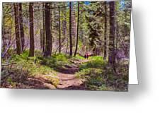Twisp River Trail Greeting Card by Omaste Witkowski