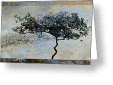 Twisted Tree Greeting Card by David Ridley