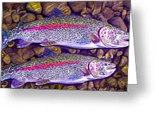 Two Beauties - Trout Greeting Card by Laird Roberts