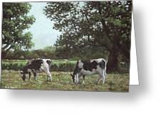 Two Cows In Field At Throop Dorset Uk Greeting Card by Martin Davey