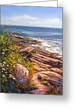 Two Lights State Park Greeting Card by Denise Horne-Kaplan