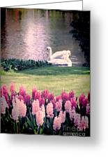 Two Swans Greeting Card by Jasna Buncic