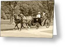 Two Team Four Wheel Cart Greeting Card by Wayne Sheeler