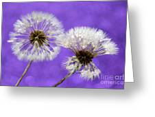 Two Wishes Greeting Card by Krissy Katsimbras