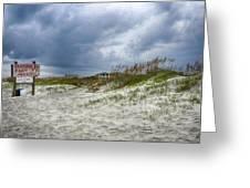 Tybee Island Greeting Card by Donnie Smith