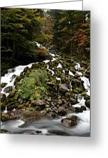 Uelhs Deth Joeu Falls Greeting Card by RicardMN Photography