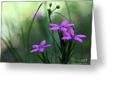 Ultra Violet Greeting Card by Neal  Eslinger