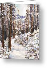 Unbroken Snow Greeting Card by Anne Gifford