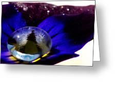 Underwater Universe Unfolding Greeting Card by Lisa Knechtel