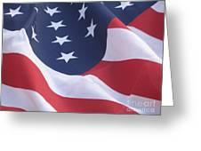 United States Flag Greeting Card by Chrisann Ellis