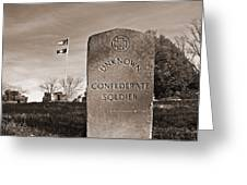 Unknown Soldier Greeting Card by Steven  Michael