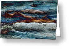 Untamed Sea 2 Greeting Card by Carol Cavalaris