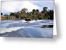 Up A Lazy River Greeting Card by Mel Steinhauer
