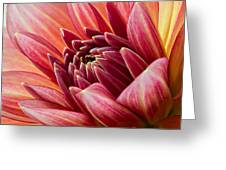 Uplifting 2 Greeting Card by Mary Jo Allen