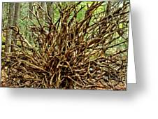 Uprooted Greeting Card by Adam Jewell
