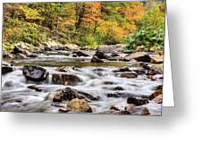 Upstream Greeting Card by JC Findley