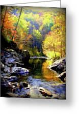 Upstream Greeting Card by Karen Wiles