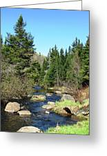 Upstream Greeting Card by Will Boutin Photos