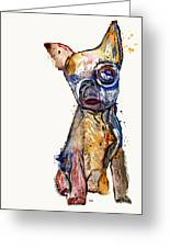 Urban Chihuahua Greeting Card by Bri Buckley