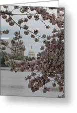 Us Capitol - Cherry Blossoms - Washington Dc - 01133 Greeting Card by DC Photographer