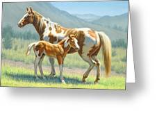 Valley Paints Greeting Card by Paul Krapf