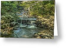 Vaughan Woods Stream Greeting Card by Jane Luxton