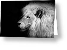 Vegas Lion - Black and White Greeting Card by Ian Monk