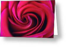 Velvet Rose Greeting Card by Kathy Yates