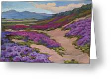 Verbena Harmony In Purple Greeting Card by Diane McClary