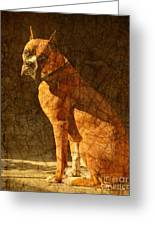 Vermeer's Dog Greeting Card by Judy Wood