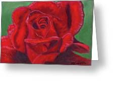 Very Red Rose Greeting Card by Arlene Crafton