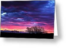 Vibrant Sunrise Greeting Card by Tim Buisman