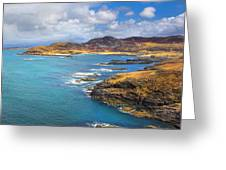 View From Ardnamurchan Greeting Card by David Hare
