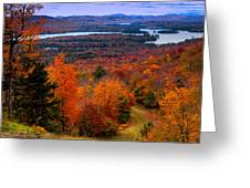 View From Mccauley Mountain II Greeting Card by David Patterson