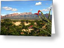 View From Roadrunner Greeting Card by Kurt Van Wagner