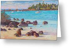 View From The Grotto Greeting Card by Dianne Panarelli Miller