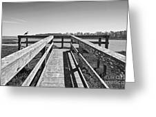 View Of The Elkhorn Slough From A Platform.  Greeting Card by Jamie Pham