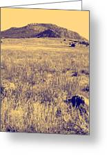 View To A Mountain Greeting Card by Mickey Harkins