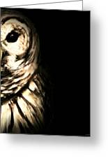 Vigilant In Darkness Greeting Card by Lourry Legarde