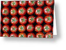 Vine Tomato Pattern Greeting Card by Tim Gainey