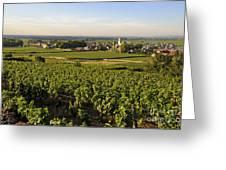 Vineyard And Village Of Pommard. Cote D'or. Route Des Grands Crus. Burgundy.france. Europe Greeting Card by Bernard Jaubert