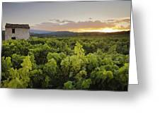Vineyard Near Malemort-du-comtat Greeting Card by Andy Kerry